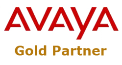 avaya-gold-partner